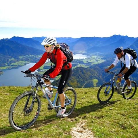 Radtouren oder Mountainbiken